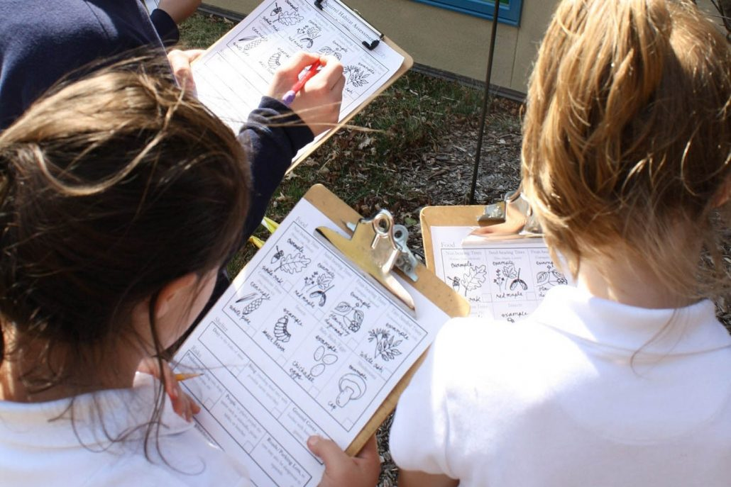 Group of Students Using An Outdoor Curriculum